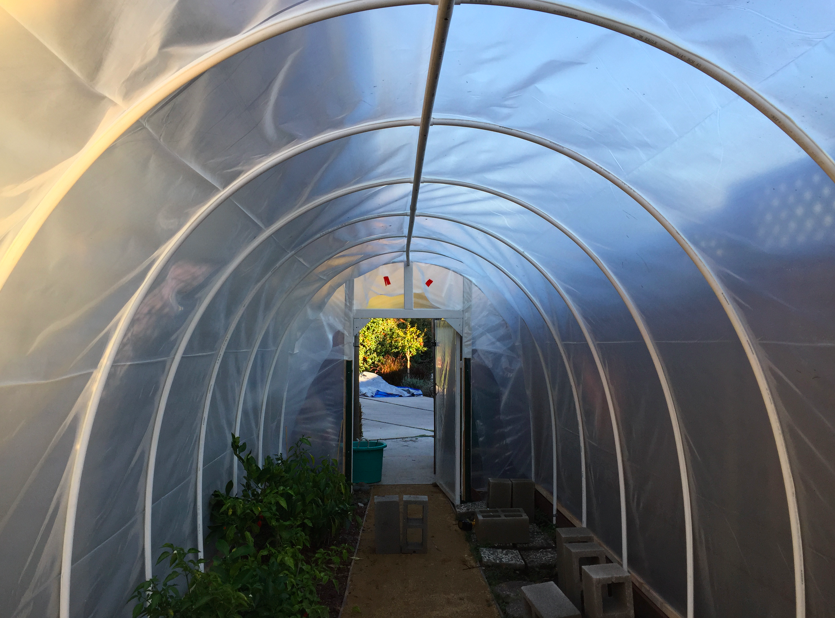 View inside the greenhouse after the sides are secured.